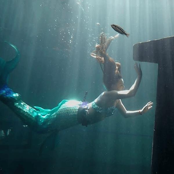 real mermaid faline